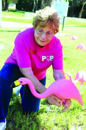 Kay Register places a pink flamingo on the lawn of the Woman's Club of Palatka on Thursday.