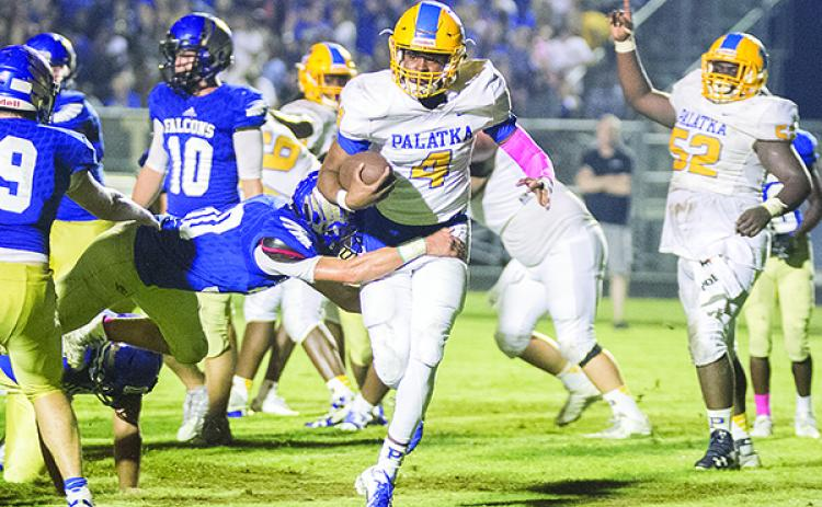 Palatka High School quarterback Mitchell McKinnon runs into the end zone for a touchdown in the Panthers' 66-65 loss to Menendez on Oct. 12, 2018. (Daily News file photo)
