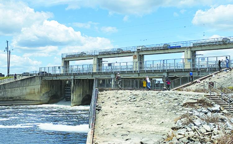 Many people gather at the Rodman Dam on Wednesday to catch fish swimming in the water.