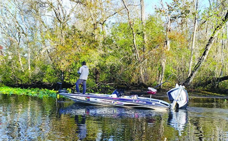 An angler looks to pick up bass during a February tournament on the St. Johns River. (WAYNE SMITH / Palatka Daily News)